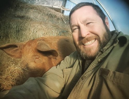 SSF Podcast Episode 003: Pigs, Mud, Bedding, Pastures, and Common Misconceptions