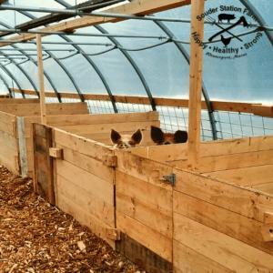 Souder Station Farm Animal Hoophouse Barn